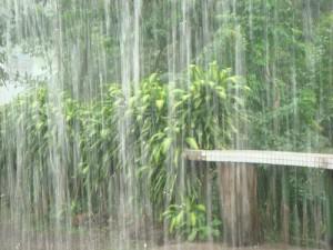 rain main