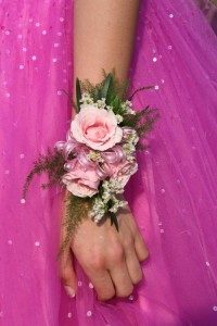 costa rica prom