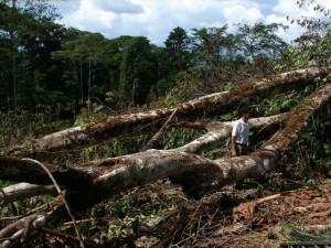 crucitas mining project
