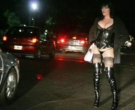 Transexual escort dating transvestite shemale sex