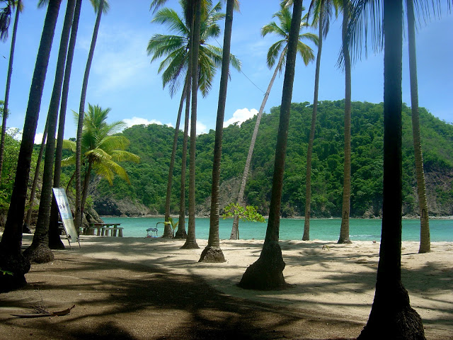 One Of Costa Rica S Best Beach Towns Playa