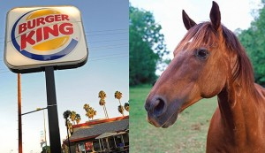 burger-king-horse-meat