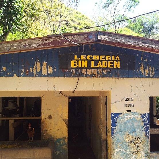 Bin Laden Got His Milk in Costa Rica