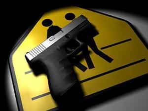 gun control in schools 1