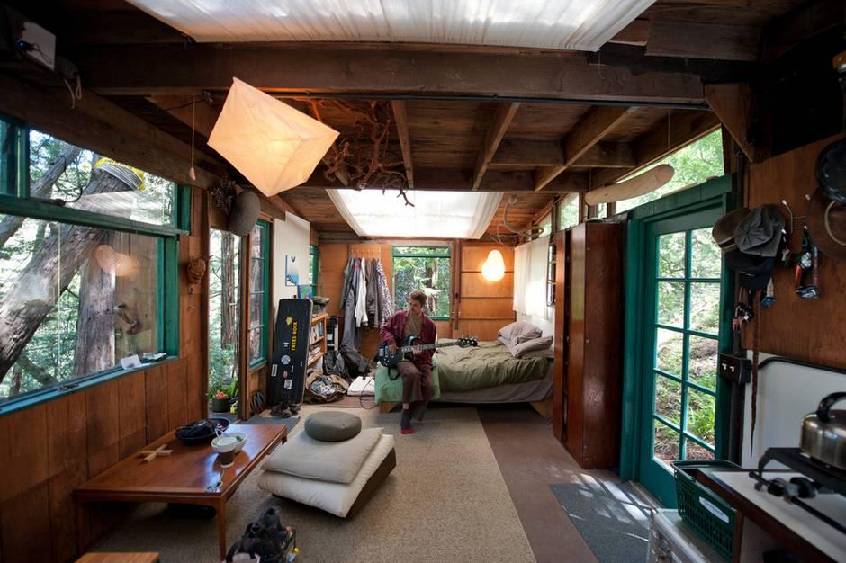 The Redwood grove cabin in California