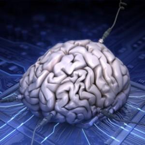 the mind 2