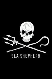 sea-shepherd