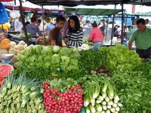 fresh food in costa rica