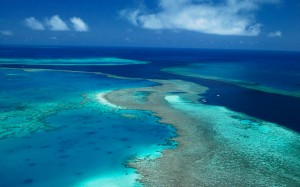 great-barrier-reef-bombs