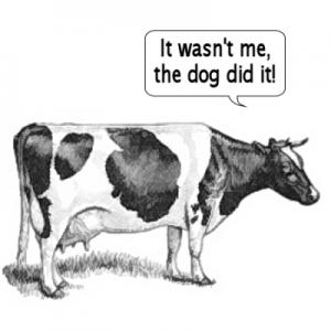 cow farts costa rica
