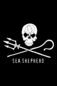 sea-shepherd costa rica office
