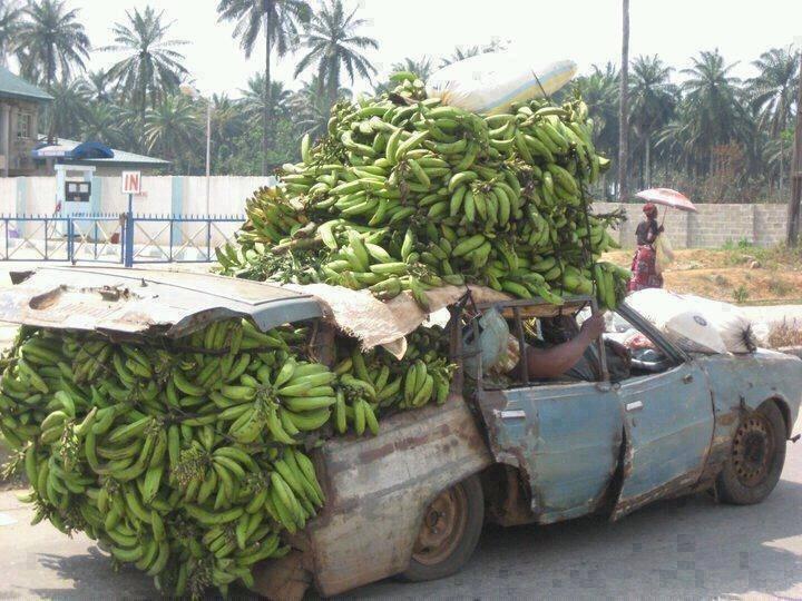 The Costa Rica Banana Mobile