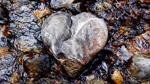 The Broken Road - Hardening of the Heart | The Costa Rican Times
