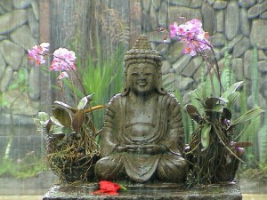 meditation in the rain