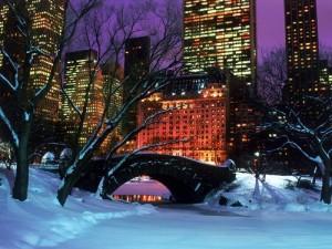 New-York-City-Holidays-Central-Park