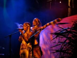 costa-rica-envision-festival