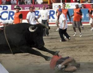 zapote-bull-fights-costa-rica-christmas