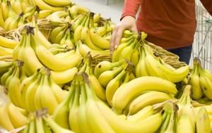 Fifth International Congress of Bananas 1