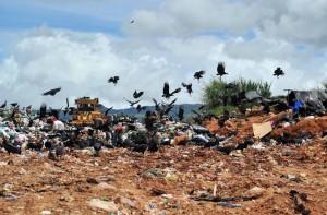trash in perez zeledon