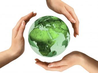 carbon neutral costa rica