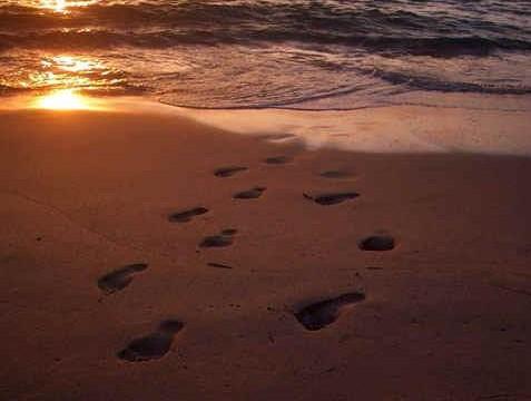 footprints 1