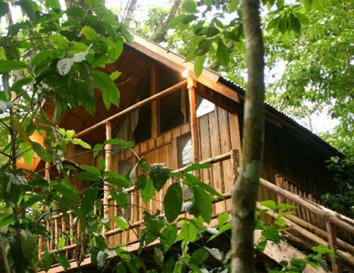 The Tree Houses Hotel costa rica 1