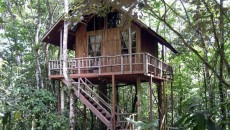 The Tree Houses Hotel costa rica main