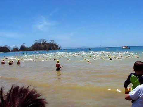 punta leona open water swim