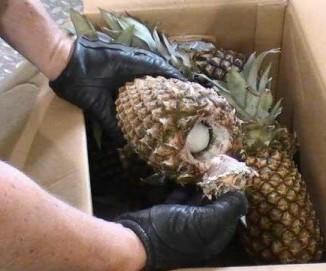 cocaine-pineapples