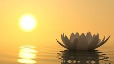 meditation main