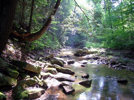 by a creek