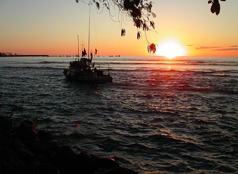 costa rica fishing license online 1