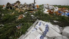 mh17-crash photos 1
