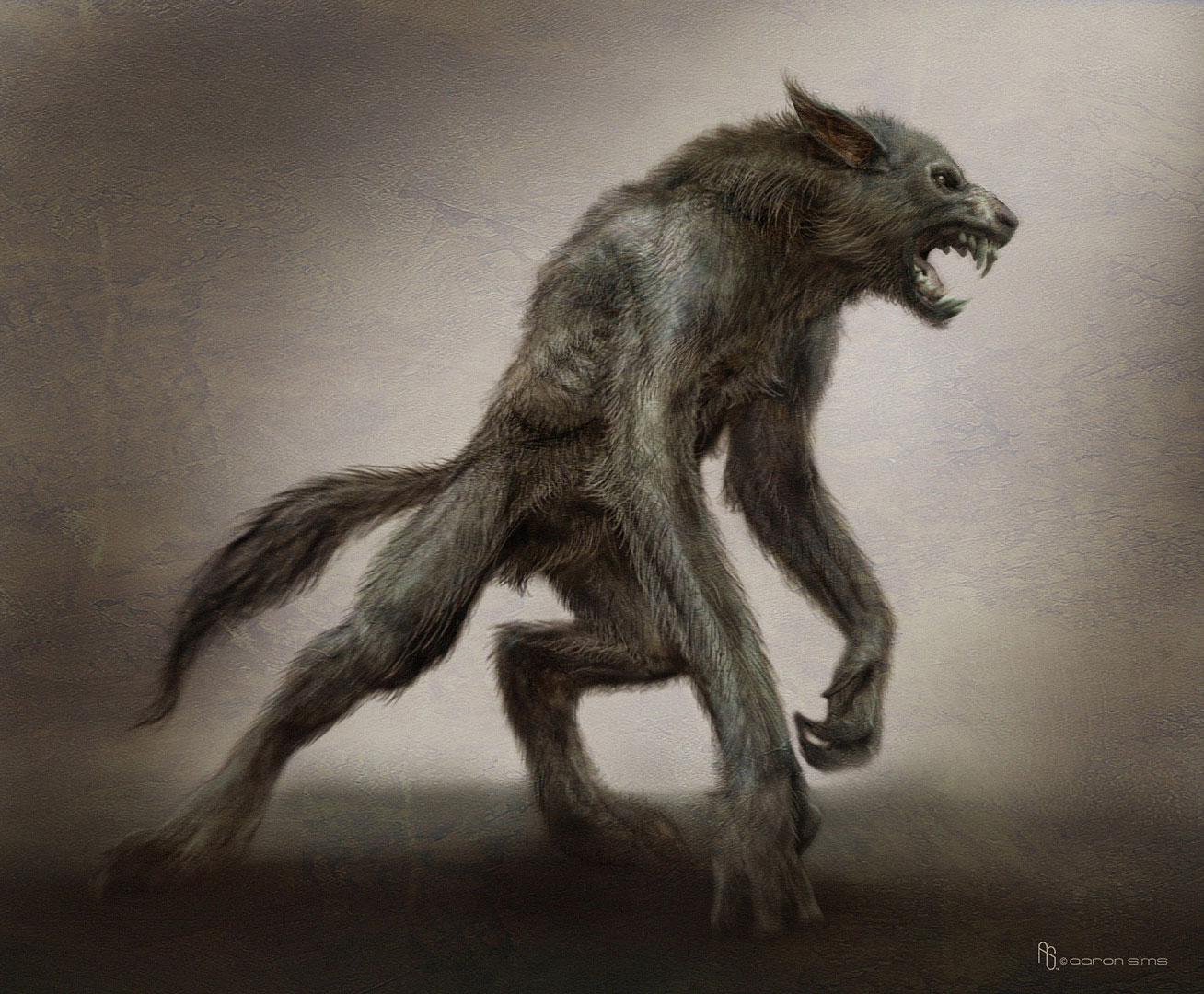 <img300*0:http://www.costaricantimes.com/wp-content/uploads/2014/08/werewolf-picture.jpg>