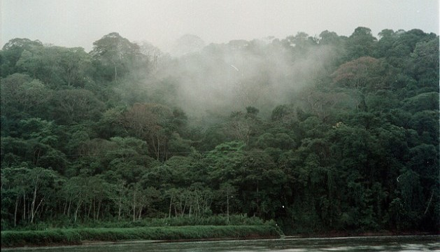 carbon neutrality costa rica main