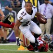 ray rice domestic violence 1