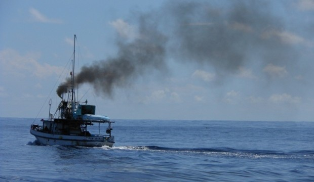 cocos island illegal fishing