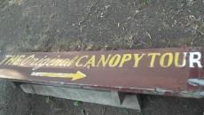 the-original-canopy-tour main