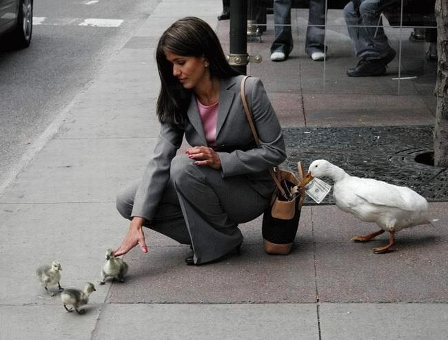 pickpockets costa rica christmas