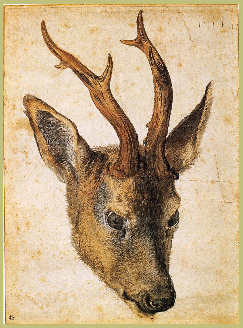 Albrecht Dürer artwork