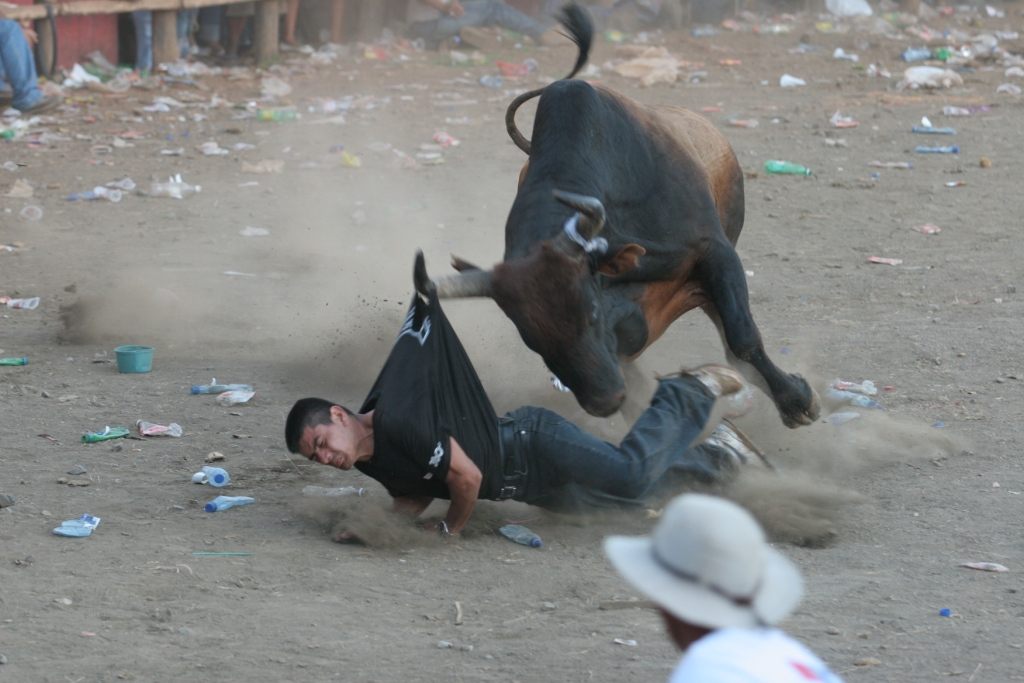 costa rica bullfights 1