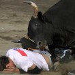 costa rica bullfights