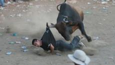 costa rica bullfights 2