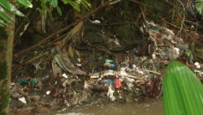 river pollution costa rica
