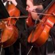 Costa Rica's Philharmonic Orchestra