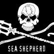 Sea-Shepherd-flag1