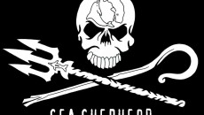 Sea-Shepherd-flag1