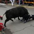 bull gores student in spain Ben Milley
