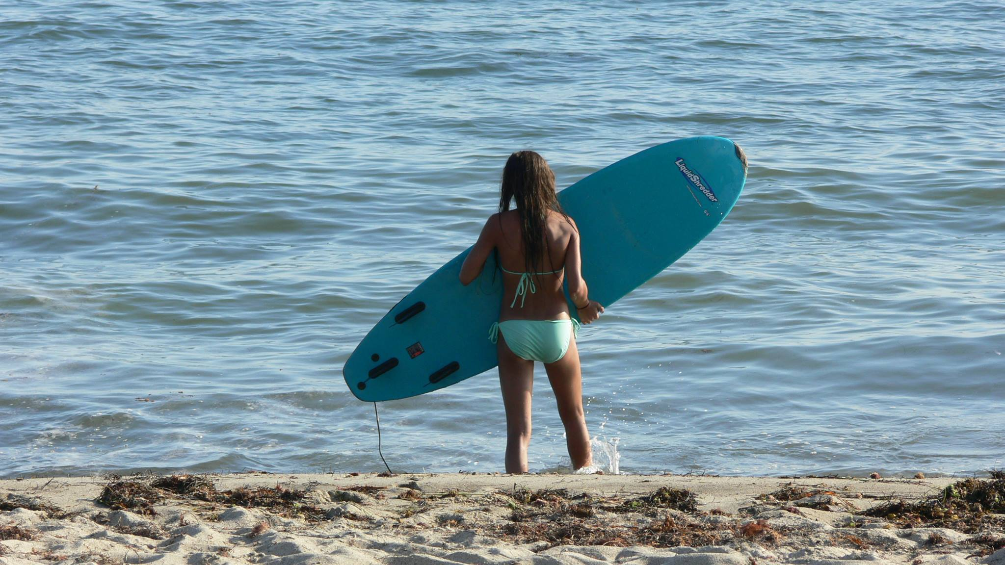 hot surf girls in bikinis 5