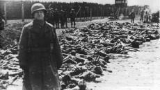 Auschwitz main